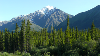 Kluane National Park & Reserve